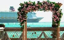 Wedding Pointe