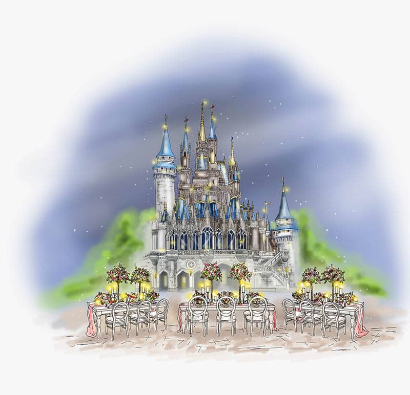 Introducing Magic Kingdom After Hours Weddings: A Real