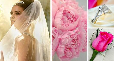 My dream wedding space disneys fairy tale weddings my dream boards junglespirit Choice Image